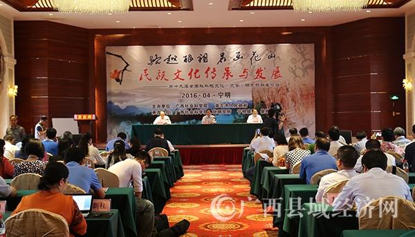 """[宁明县]专家学者为花山文化""""把脉"""" 助推文化旅游产业融合发展"""
