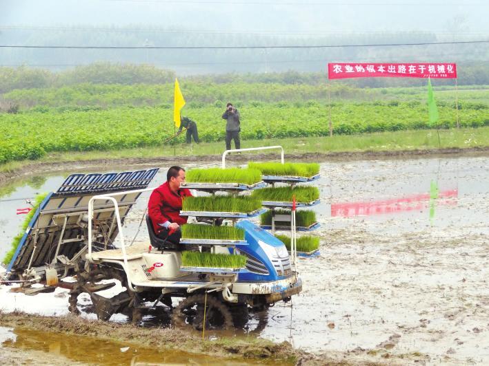 柳州市春耕农机安全使用情况调查