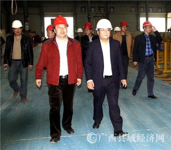 贺州市领导到平桂调研工业园区及项目建设