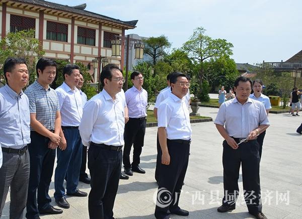 自治区党委常委、常务副主席唐仁健到合浦县调研