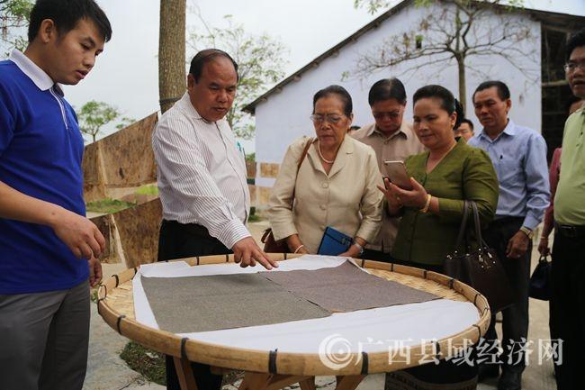 老挝川圹省省委常委、副省长坎森(左二)了解我县蚕种培育情况