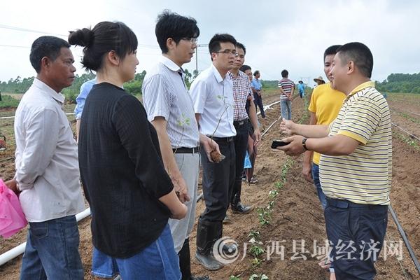 图二:公司人员向大家讲授芳樟种植技巧。_副本