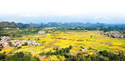 广西农业项目合作洽谈暨科技成果展示对接会即将开幕