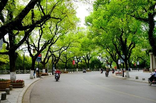 桂林最美的10条路(图文)