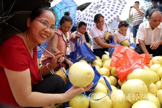 游客抢购红心蜜柚。_副本