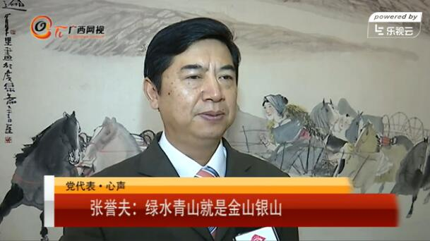 昭平县委书记张誉夫:绿水青山就是金山银山