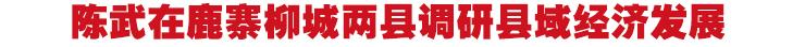 陈武在鹿寨柳城两县调研县域经济发展