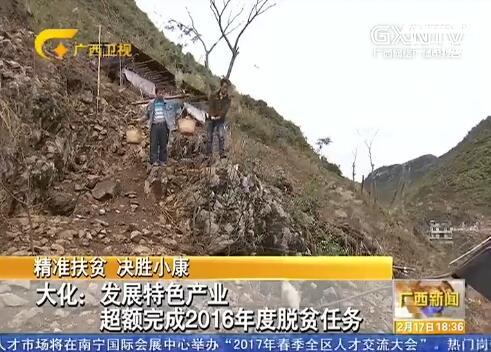 [大化县]发展特色产业 超额完成2016年度脱贫任务