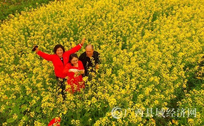 图6:2月14日,游客在广西柳州市融安县大良镇和南村油菜花田里踏青赏花。(谭凯兴 摄).JPG