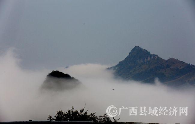 广西融安雨后云海如仙境