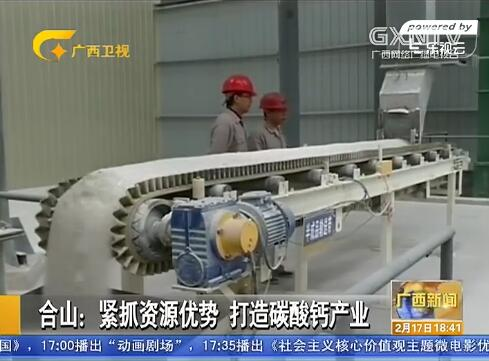[合山市]紧抓资源优势 打造碳酸钙产业