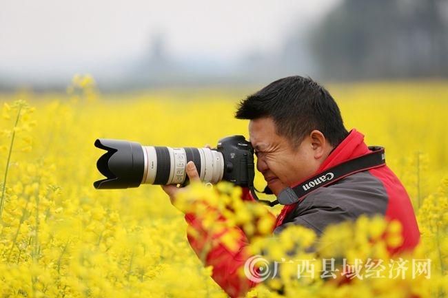 图8:2月14日,在广西柳州市融安县大良镇和南村,一名摄影爱好者在拍摄油菜花。(谭凯兴 摄).JPG
