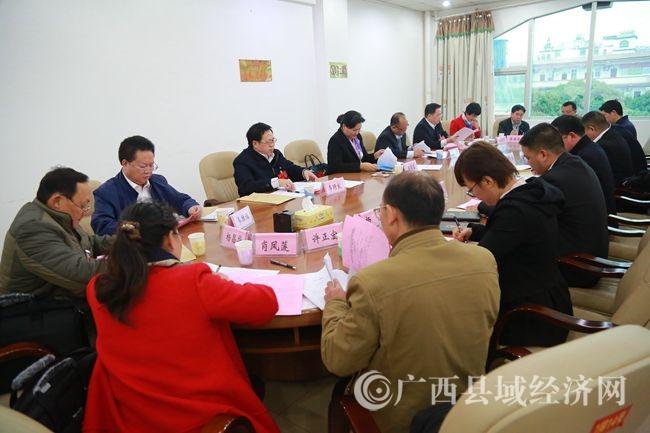 凌云县代表团审议市政府工作报告侧记
