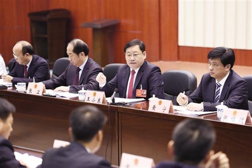 王小东参加横县代表团审议