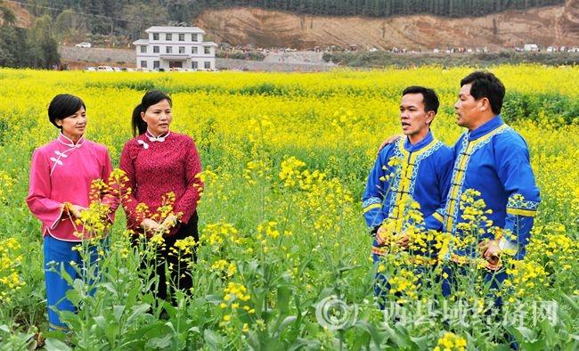 蚂拐节喜庆活动当天,来自不同村寨的两对男女歌手正在田间用山歌自报家门、相互问候和祝福(韦禄东 摄)