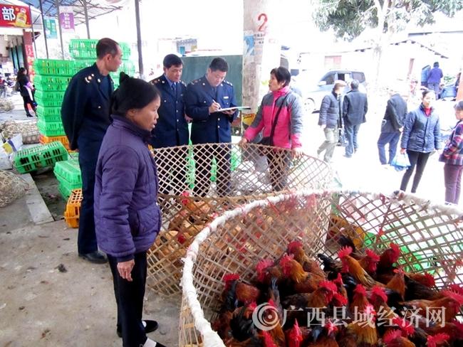 大化县工商局开展活禽交易市场检查防控H7N9流感疫情