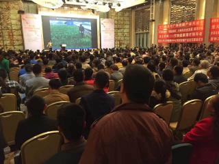第三届中国柑橘产业发展高峰论坛:放眼全球 焦距国柑
