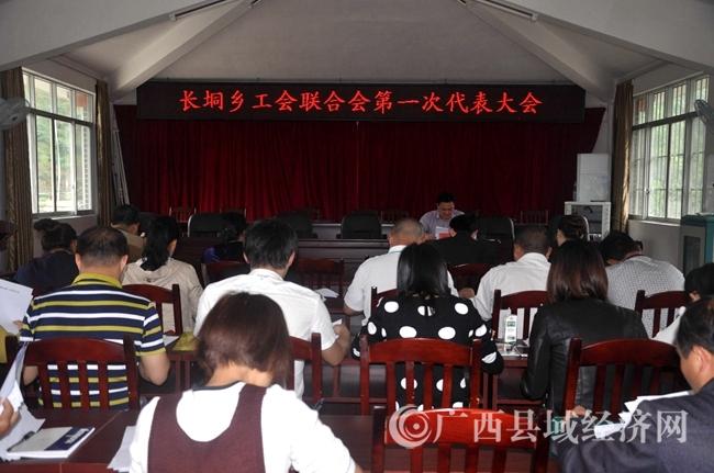 金秀县长垌乡工会联合会第一次代表大会开幕