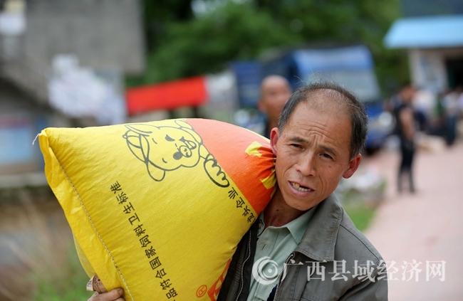 图10:4月18日,在广西柳州市融安县桥板乡古板村,贫困户代表在领取乳猪饲料。(谭凯兴 摄)