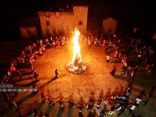 百色隆林:彝族举行千年古树茶祭茶盛典