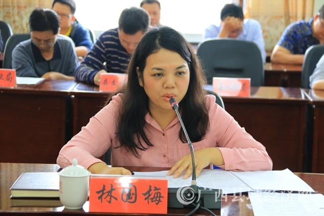 南丹县委常委、副县长林国梅在特色小镇调研座谈会上讲话