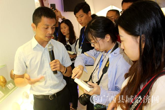 """逆势飞扬:县域经济跨越发展的""""鹿寨模式"""""""
