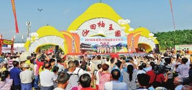 [容县]发挥区域新优势发展壮大县域经济纪实
