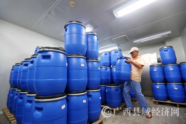 图17:7月26日,在广西仙草堂制药有限责任公司青蒿素成品仓库,工人在搬运青蒿素成品。(谭凯兴 摄)