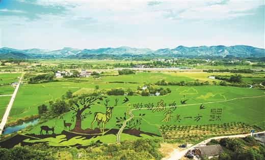 [鹿寨县]县域经济发展聚焦:呦呦鹿鸣 寨美一方