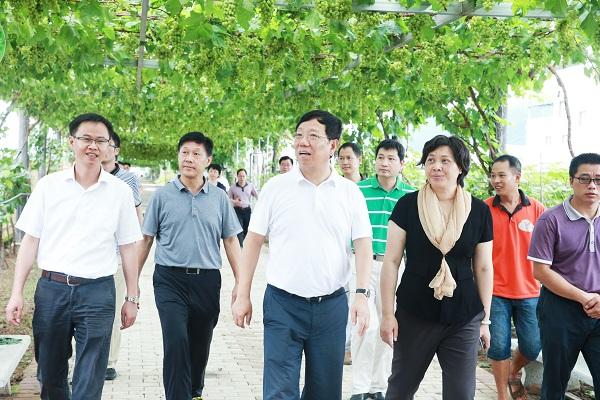 赵乐秦:全面提升县域经济发展水平 树立桂林城区北大门新形象