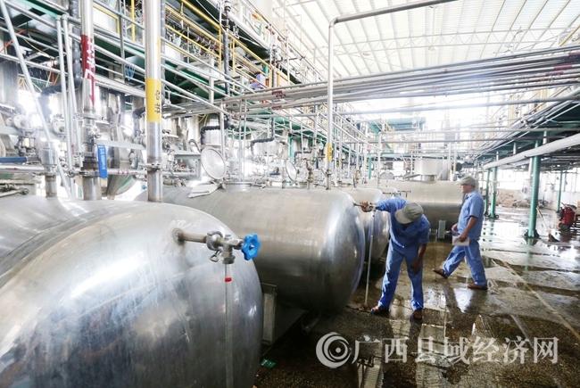 图8:7月26日,广西仙草堂制药有限责任公司工人在青蒿素提炼车间检查保养设备。(谭凯兴 摄)