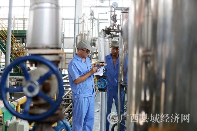 图11:7月26日,广西仙草堂制药有限责任公司工人在青蒿素提炼车间检查保养设备。(谭凯兴 摄)