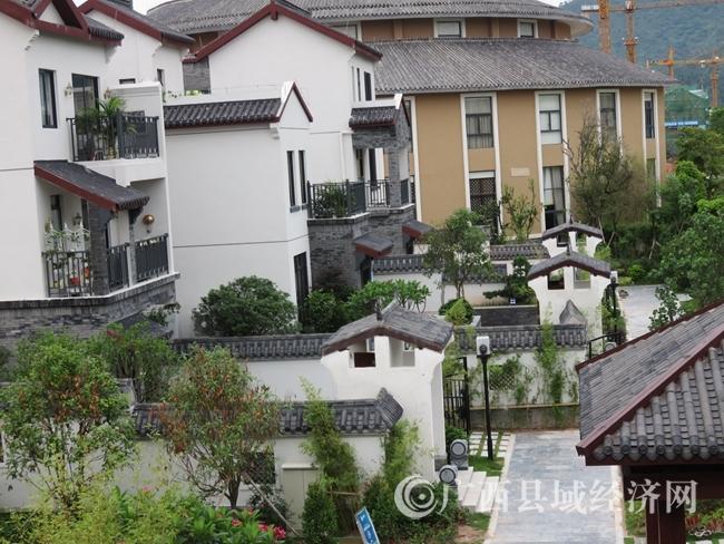 [陆川县]强基础 补短板 增后劲 全面推进县域经济转型发展