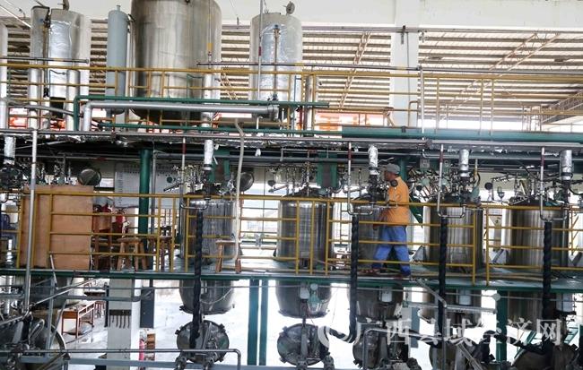 图12:7月26日,广西仙草堂制药有限责任公司工人在青蒿素提炼车间检查保养设备。(谭凯兴 摄)