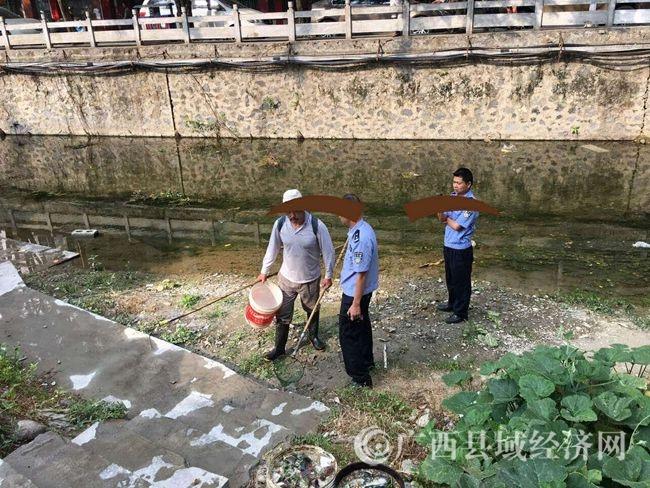 凌云:检察建议促河道生态整治初见成效
