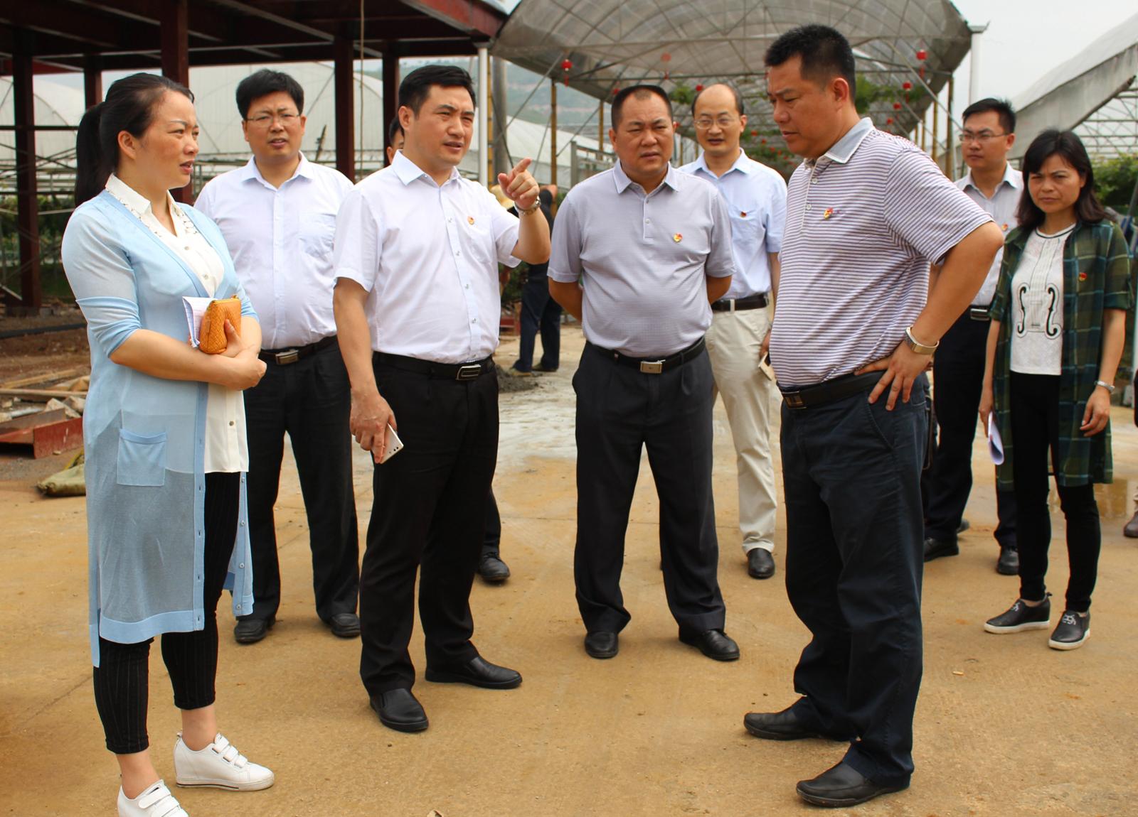 鹿寨:加快推进全区县域经济发展大会考察点建设工作
