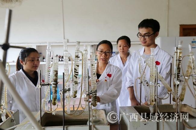 图15:7月26日,广西仙草堂制药有限责任公司实验室,工人人员在对青蒿样品进行试验分析。(谭凯兴 摄)