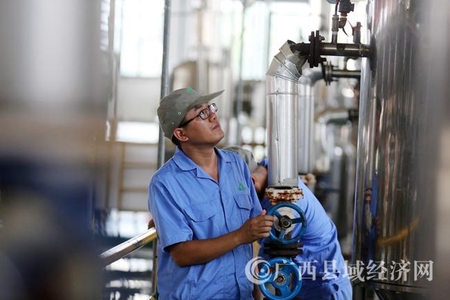 图10:7月26日,广西仙草堂制药有限责任公司工人在青蒿素提炼车间检查保养设备。(谭凯兴 摄)