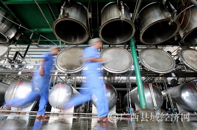 图1:7月26日,广西仙草堂制药有限责任公司工人在青蒿素提炼车间检查保养设备。(谭凯兴 摄)
