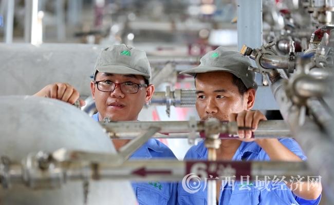 图6:7月26日,广西仙草堂制药有限责任公司工人在青蒿素提炼车间检查保养设备。(谭凯兴 摄)
