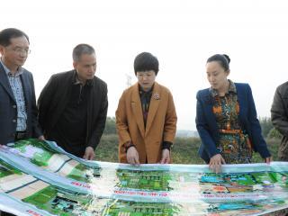 吕燕梅区长调研现代农业发展