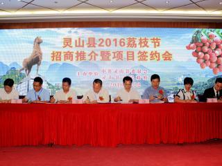 灵山县举行2016年荔枝节招商推介暨签约仪式