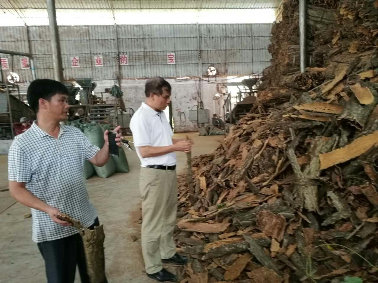 自治区工信委无线电管理局局长潘红星到天峨县调研生态工业