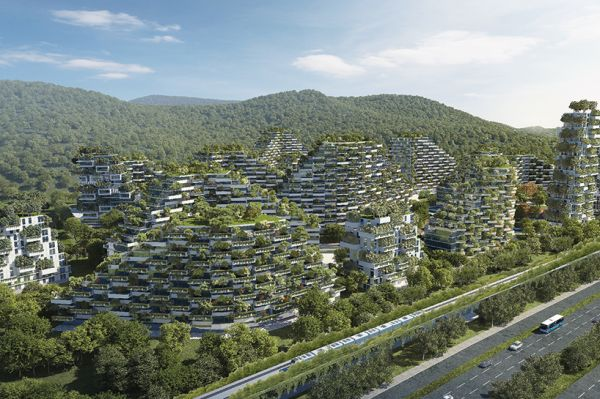 """广西柳州将建设中国首座""""森林城市"""""""