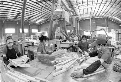 [三江县]侗乡大力发展竹木产业助力百姓脱贫增收侧记