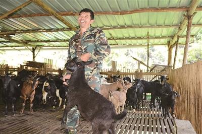 养羊产业促农增收。.jpg