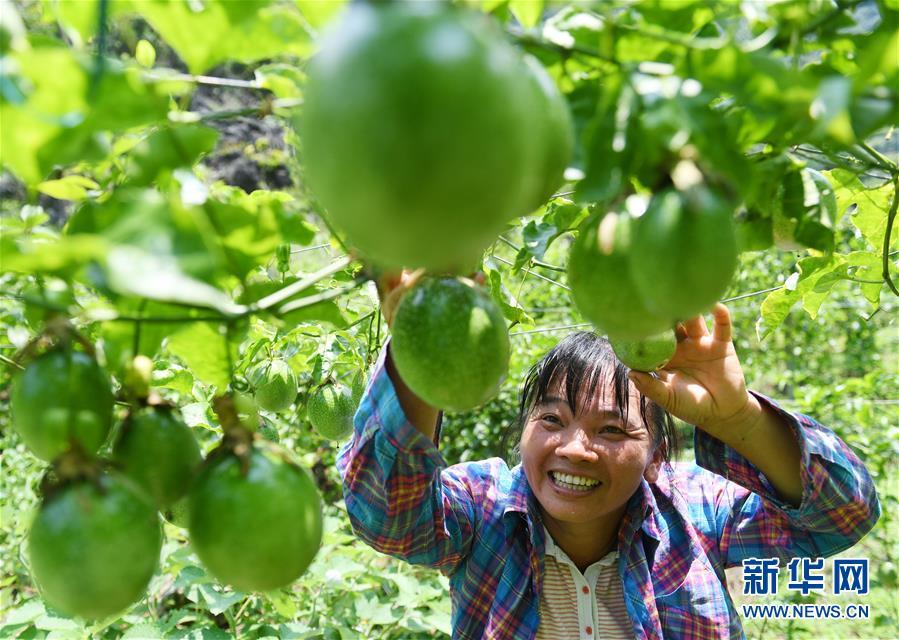 广西财政拨付33亿多元重点助力深度贫困地区脱贫攻坚