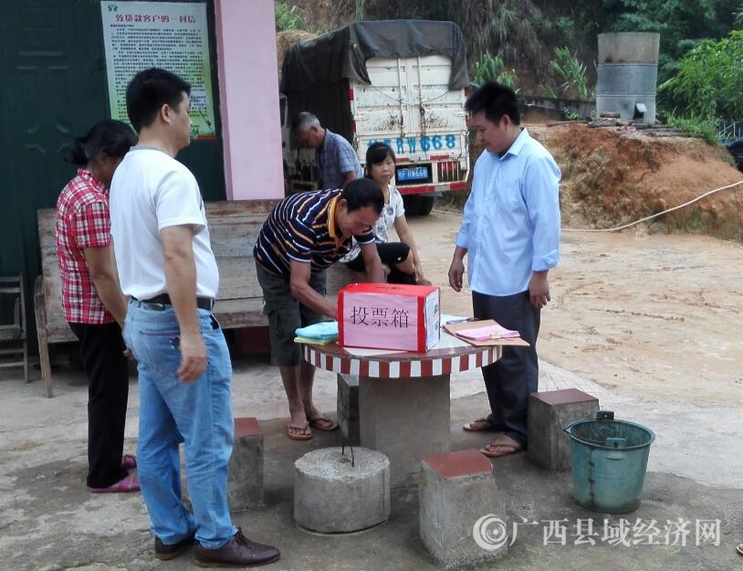 宁明县广大选民积极参与村(社区)换届选举工作