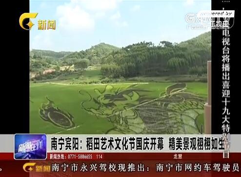 南宁宾阳:稻田艺术文化节国庆开幕 精美景观栩栩如生