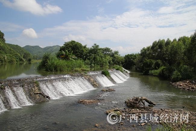 历经洪水冲刷的三江坝双龙河水榕带